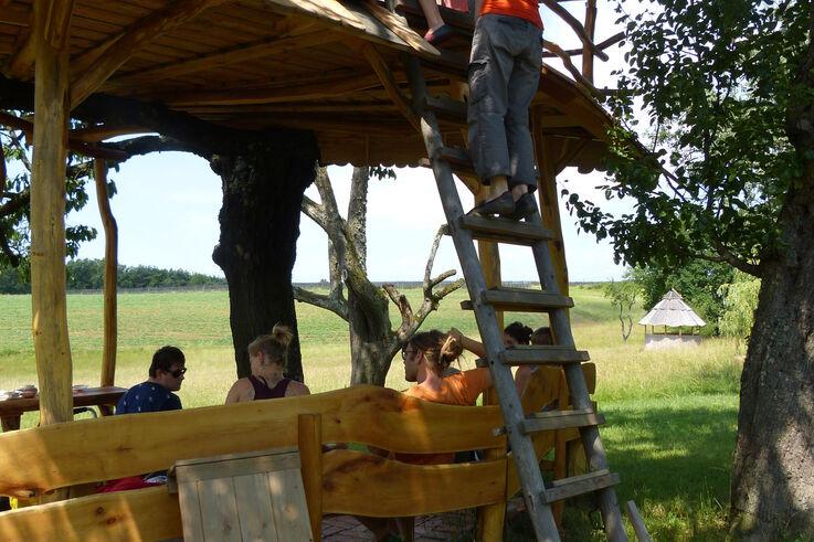 TeilnehmerInnen des Projekts P.I.L.O.T. beim Klettern (Bild: P.I.L.O.T.)